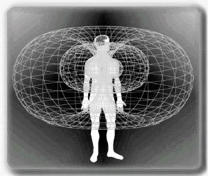 bio-test-biorisonanza-magnetica-simona-vignali-milano