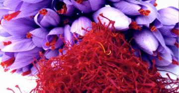Zafferano, l'antiossidante naturale che dona un'abbronzatura perfetta ed altri interessanti benefici