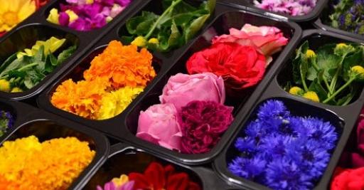 40 fiori eduli (da mangiare) per piatti gustosi e vivaci