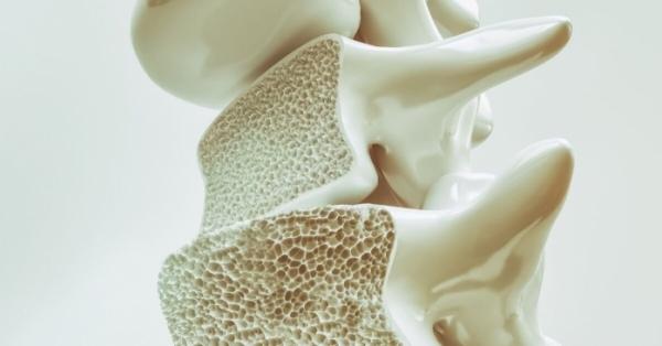 Stop osteoporosi se mangi questi cibi insoliti ricchissimi di Vitamina D