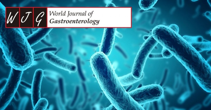 I Probiotici alleviano i sintomi del colon irritabile - World Journal of Gastroenterology