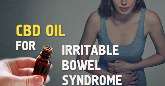 In che modo l'olio CBD migliora la salute intestinale e aiuta la digestione?