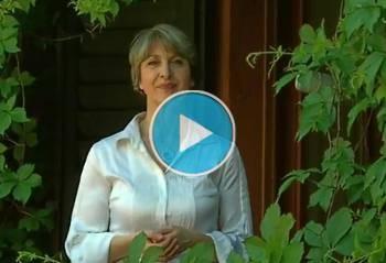 Lo stress secondo la Naturopatia Funzionale Integrata® della Naturopatia Simona Vignali
